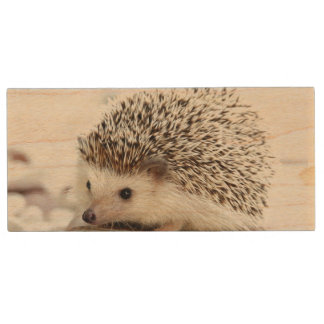Cute Baby Hedgehog Wood USB Flash Drive