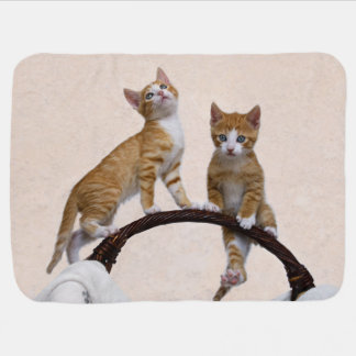 Cute Baby Kitten Funny Play Gym Photo Cat Lover - Swaddle Blanket