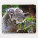 Cute baby koala bear with mom in a tree mousepads