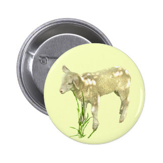 Cute Baby Lamb on Yellow Button