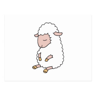 cute baby lamb postcard
