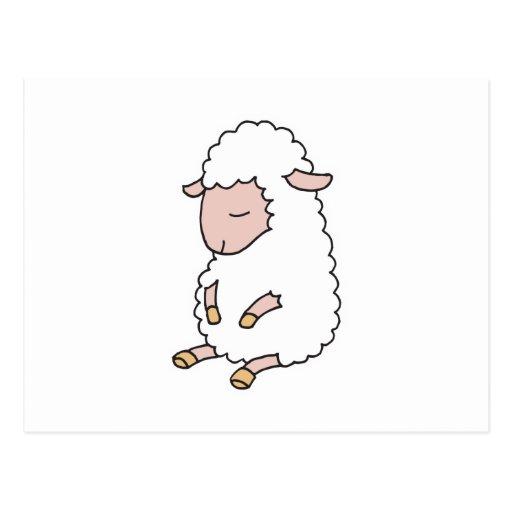 cute baby lamb postcard