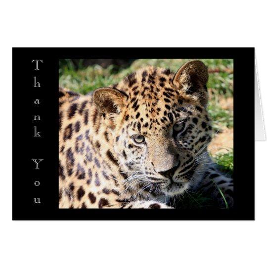 Cute baby leopard cub photo thank you card