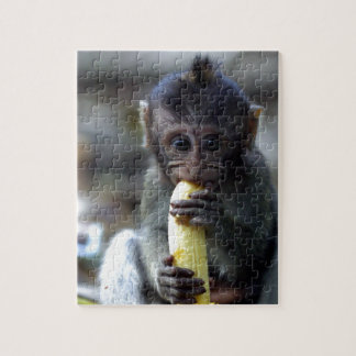 Cute baby macaque monkey eating banana jigsaw puzzle