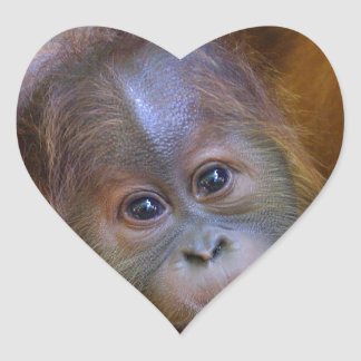 Cute baby Orangutan Heart Sticker