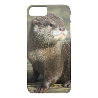 Cute Baby Otter iPhone 7 Case