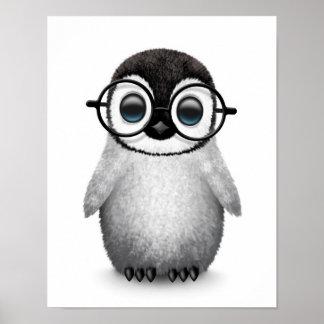 Cute Baby Penguin Wearing Eye Glasses on White Poster