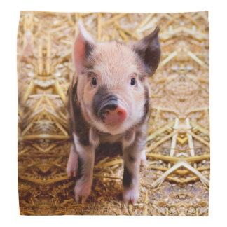 Cute Baby Piglet Farm Animals Babies Head Kerchiefs