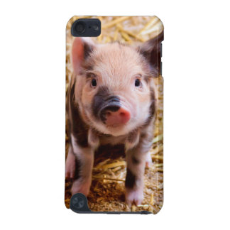 Cute Baby Piglet Farm Animals Babies iPod Touch 5G Covers