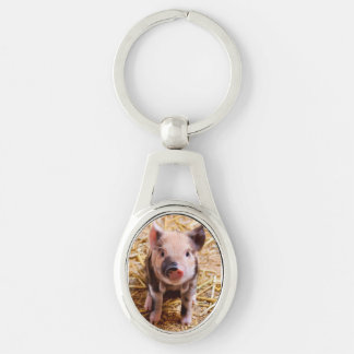 Cute Baby Piglet Farm Animals Babies Silver-Colored Oval Keychain