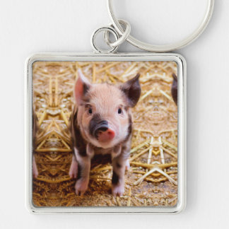 Cute Baby Piglet Farm Animals Babies Silver-Colored Square Keychain