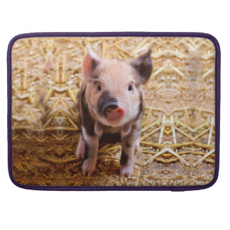 Cute Baby Piglet Farm Animals Babies Sleeves For MacBook Pro