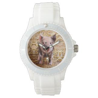Cute Baby Piglet Farm Animals Babies Wrist Watch