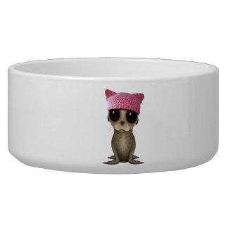 Cute Baby Sea Lion Wearing Pussy Hat