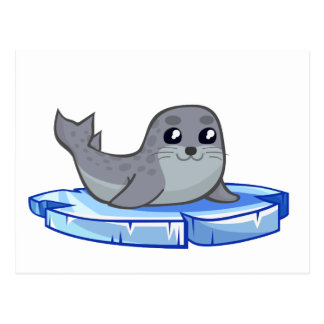Cute baby seal cartoon postcard