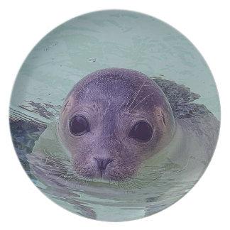 Cute Baby Seal Plate
