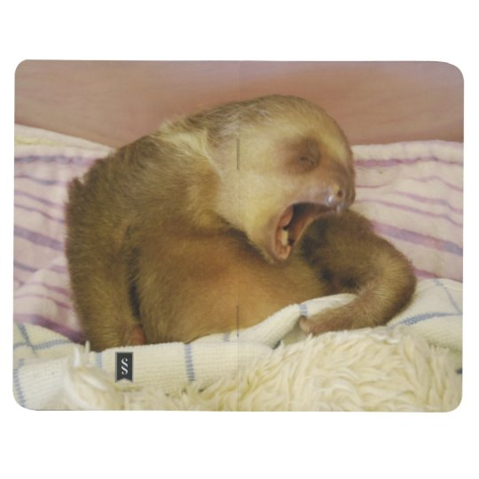 Cute Baby Sloth Journal