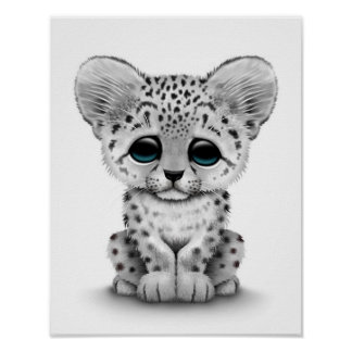 Cute Baby Snow Leopard Cub on White Poster