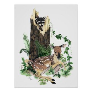Cute Baby Whitetail Deer Fawn and Raccoon Print