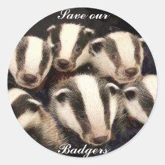 Cute Badger Cubs Round Sticker