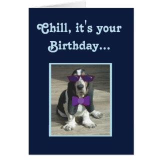 Cute Basset Hound on Funny Birthday Card