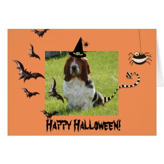 Cute Basset Hound on Funny Halloween card
