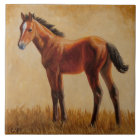 Cute Bay Quarter Horse Foal Tile