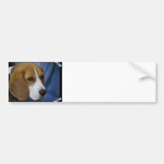 Cute Beagle  Bumper Sticker