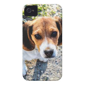 Cute Beagle Case-Mate iPhone 4 Cases