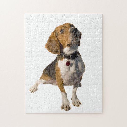 Cute Beagle Dog Jigsaw Puzzle