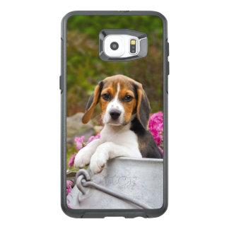 Cute Beagle Dog Puppy in a Milk Churn - protection