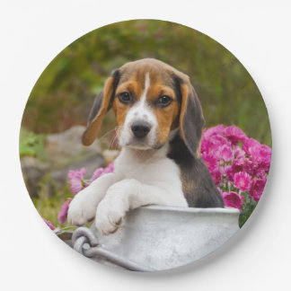 Cute  Beagle Dog Puppy in Milk Churn  Happy Party Paper Plate
