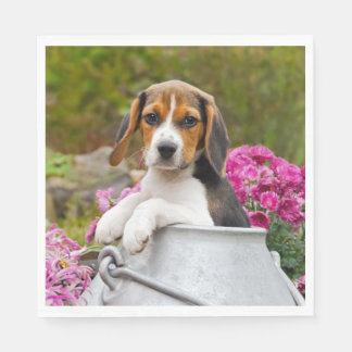 Cute Beagle Dog Puppy in Milk Churn with Flowers . Paper Napkin