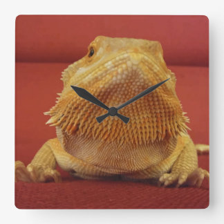 Cute Beardie Picture Red Square Wall Clock