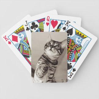 Cute Bengal Kitten Bicycle Playing Cards