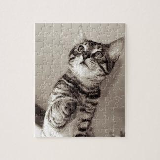 Cute Bengal Kitten Jigsaw Puzzle