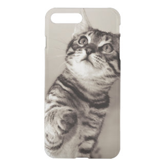 Cute Bengal Kitten Photo iPhone 8 Plus/7 Plus Case