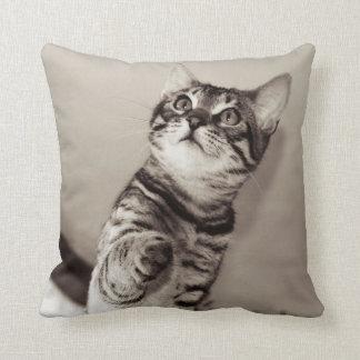 Cute Bengal Kitten Photo Throw Pillow