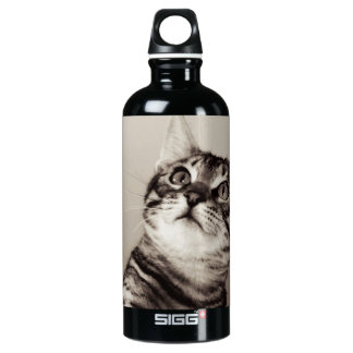 Cute Bengal Kitten Photo Water Bottle