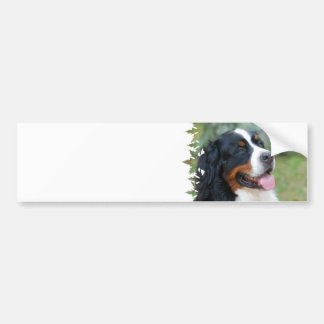 Cute Bernese Bumper Sticker