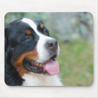 Cute Bernese Mouse Pad