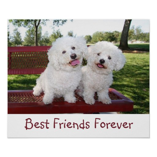 Cute Best Friends Forever Poster Print