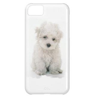 Cute Bichon Frise iPhone 5C Covers