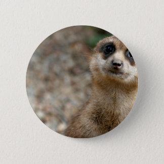 Cute Big-Eyed Meerkat 2 Inch Round Button