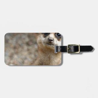 Cute Big-Eyed Meerkat Luggage Tag