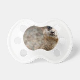 Cute Big-Eyed Meerkat Pacifier