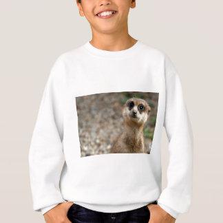 Cute Big-Eyed Meerkat Sweatshirt