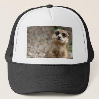 Cute Big-Eyed Meerkat Trucker Hat