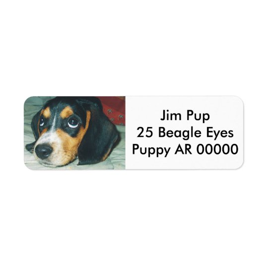 Cute Big Eyes Beagle Puppy Return Address Label