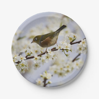 Cute Bird and Cherry Blossom 7 Inch Paper Plate